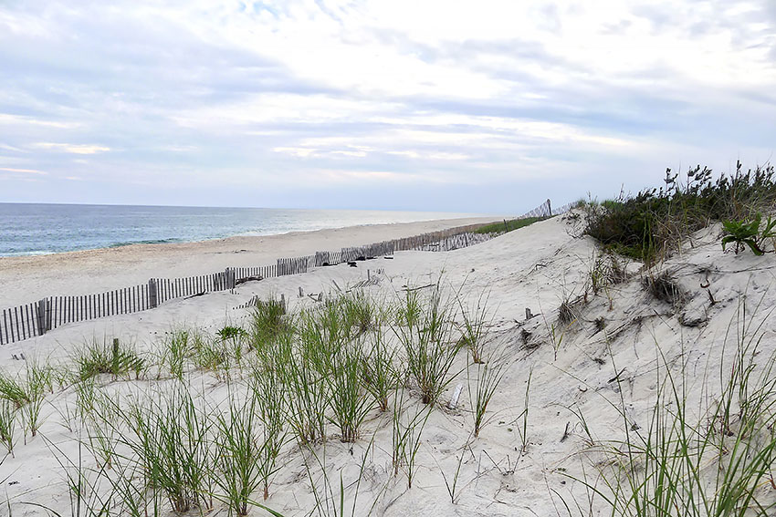 Hamptons strand size