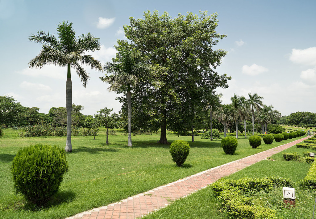Park new delhi size