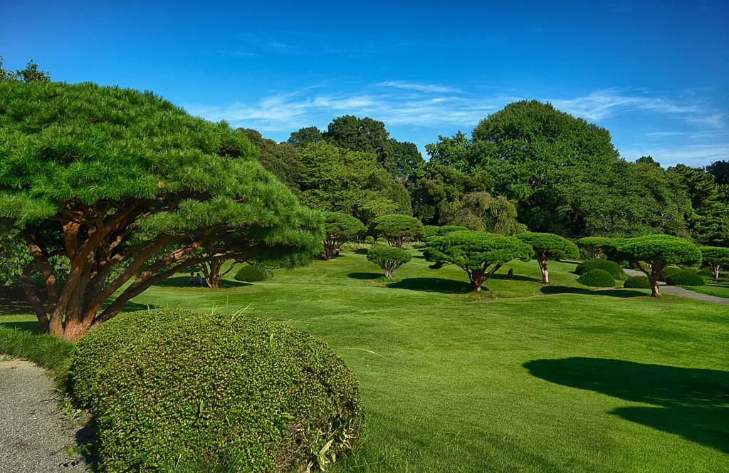 tokyo-garden-size