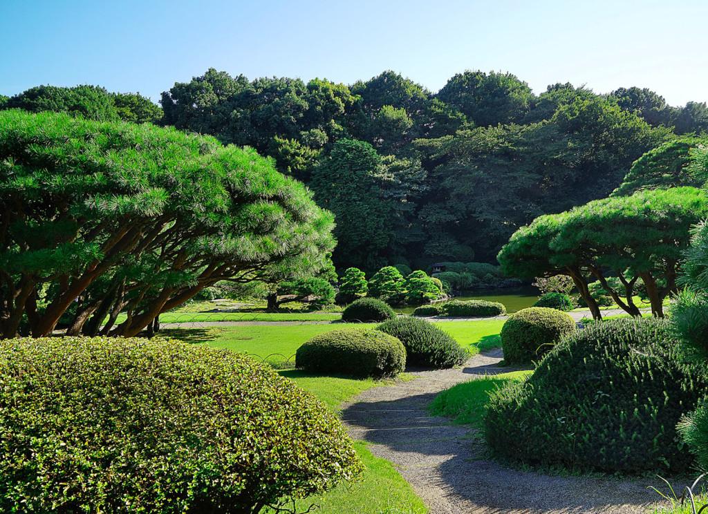 tokyo-garden-size-ii